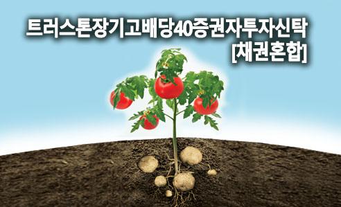 트러스톤장기고배당40증권자투자신탁[채권혼합]